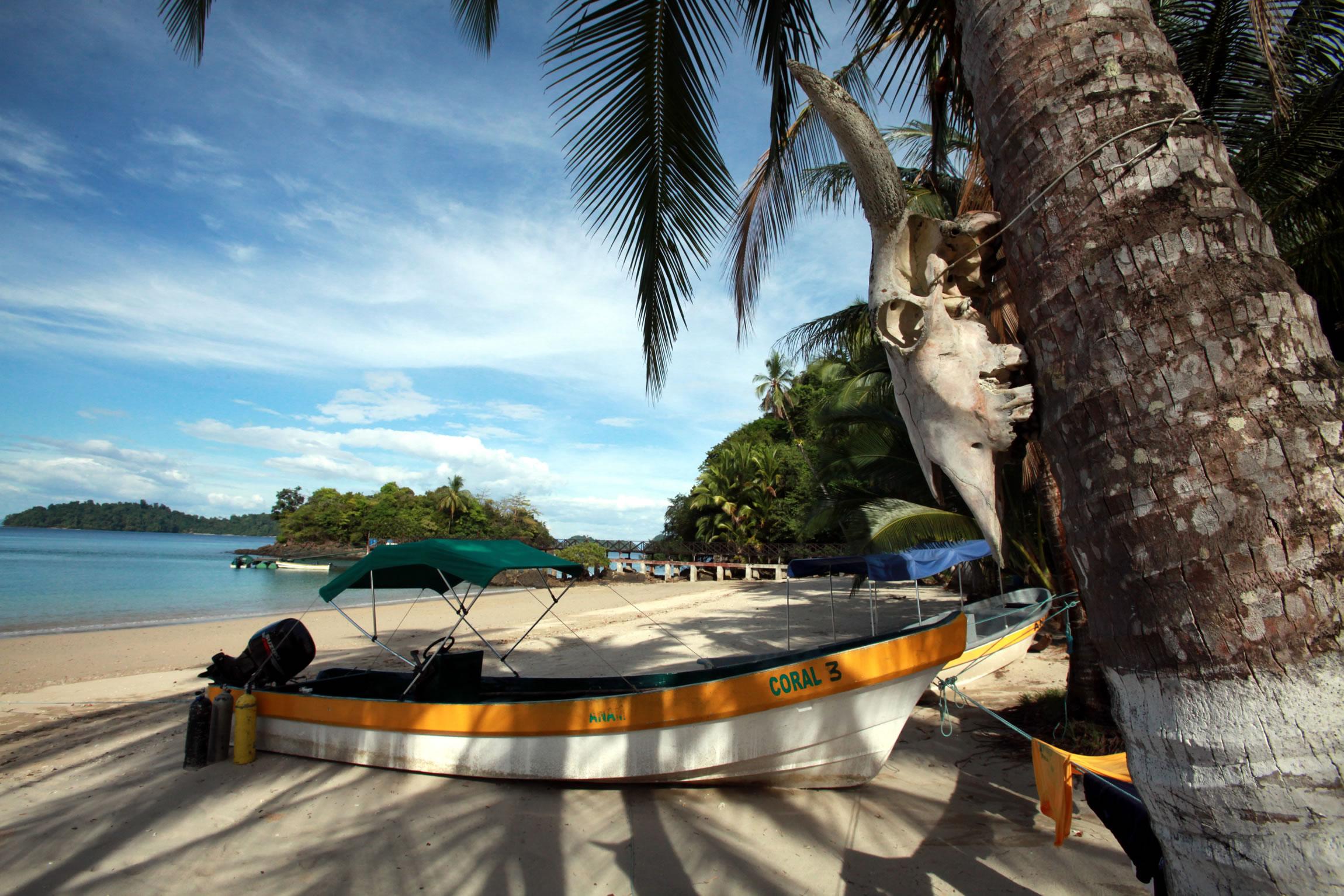 Panama-Wildlife-Tours-Anam-Filed-Station_Beach-02