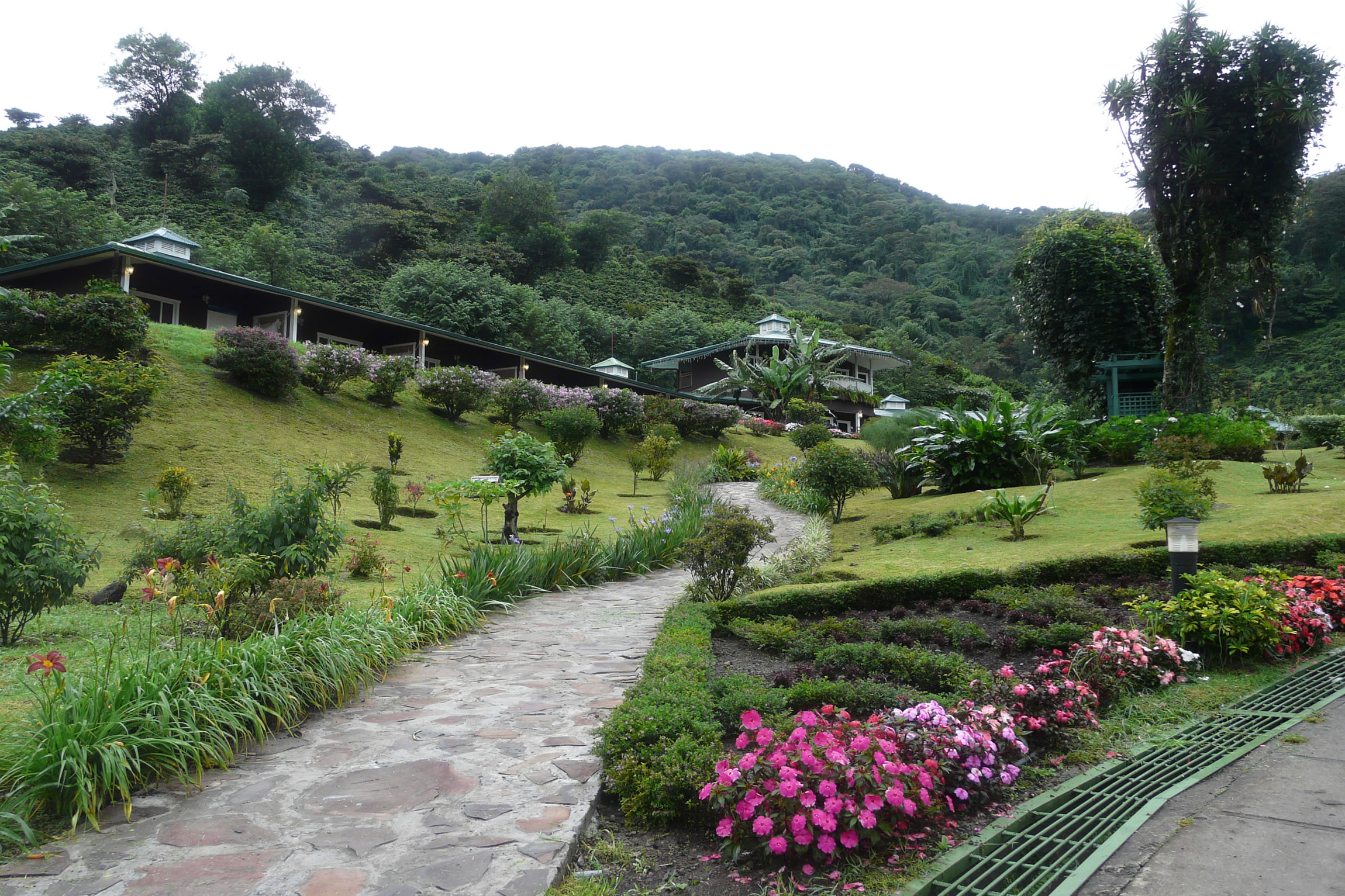 Panama-Wildlife-Tours-Hotel-Finca-Lerida_Gardens