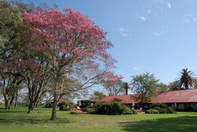 Argentina-Holiday-Tours-Estancia-Rincon-Del-Socorro-Exterior-Gardens