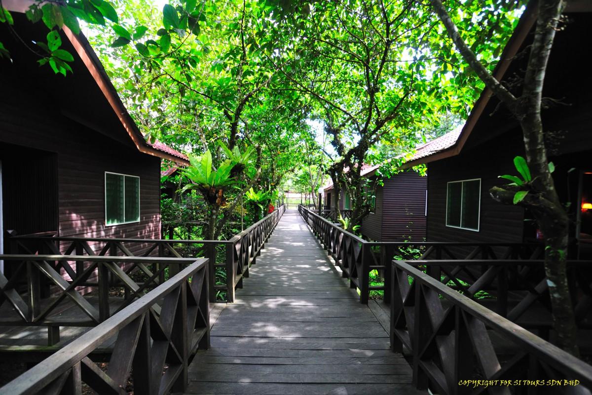 Kinabatangan Riverside Lodge Reef And Rainforest Tours