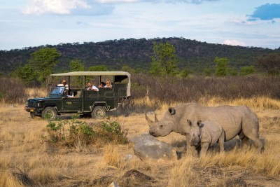 Namibia-Wildlife-Tours-Ongava-Tented-Camp_Rhinos