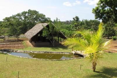 Sri-Lanka-Holiday-Tours-Kalus-Hideaway_Gardens