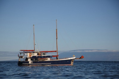 Galapagos-Wildlife-Cruise_Samba