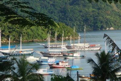 Brazil-Wildlife-Tours_Accommodation_Pousada-Naturalia-bay-view