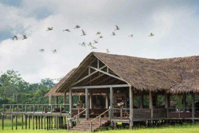 Congo-Wildlife-Tours_Accommodation_Mboko-Camp-exterior-1