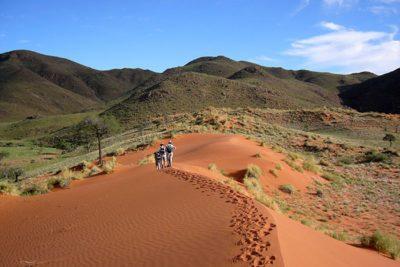 Namibia-Wildlife-Tours_Accommodation_Tok-Tokkie-Trails-2